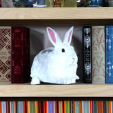 Garudio Studiage Cardboard Flat Pet Rabbit