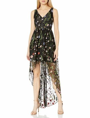 Adrianna Papell Women's V Neck Embroidered Tulle Gown with Hi Low Hem