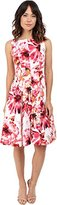 Maggy London Women's Painted Floral Cotton Fit and Flare with Bateau Neck Dress