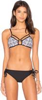 Ella Moss Mazatlan Bralette Bikini Top