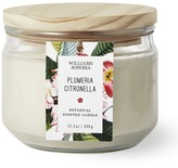 Williams-Sonoma Williams Sonoma Citronella Multi-Wick Plumeria Candle
