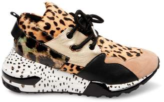 Steve Madden Stevemadden CLIFF ANIMAL