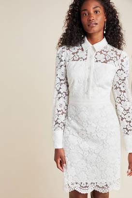 Shoshanna Highland Lace Mini Dress