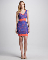 Madison Marcus Contrast-Lace Ponte Dress