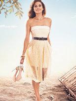 New York & Co. Eva Mendes Collection - Rosana Dress - Petite