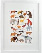 James Barker Extinct Prehistoric Animal Print A4