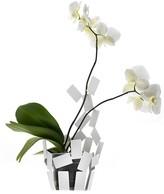 """Alessi Stanza Scirocco"""" Vase Cover, White"""