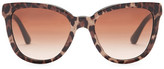 Dolce & Gabbana Women's Lace Retro Acetate Frame Sunglasses