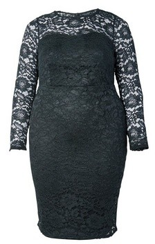 Dorothy Perkins Womens Dp Curve Black Lace Fitted Dress, Black