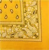 Kaiser Novelty Bandanas Paisley Cotton Bandanas (, 22 X 22 in)