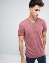 Hollister Slim Fit Core T-Shirt Seagull Embroid Logo In Burgundy