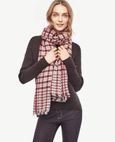 Ann Taylor Checked Fringe Scarf