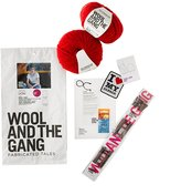 Zion Wool and the gang lion hat kit