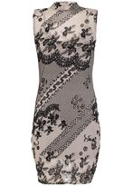 Quiz Nude And Black Flock Print Mesh Bodycon Dress