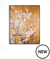 Graham & Brown Oriental Blossom Hand Printed Framed Canvas