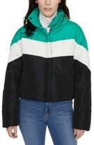Sanctuary Ski Club Puffer Coat