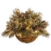 NATIONAL TREE CO National Tree Co Glittery Bristle Hanging Basket