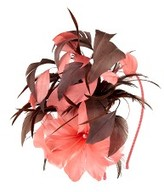 Rose Feather Fascinator
