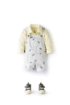 Country Road Pineapple Embroidered Overalls