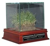 Steiner Sports Freeze-Dried Grass from the Original Yankee Stadium