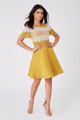 Little Mistress Cara Yellow Crochet Lace Mini Skater Dress