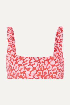 Fisch - + Net Sustain Colombier Leopard-print Bikini Top - Leopard print
