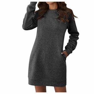 MOIKA Womens Loose Tunic Shirt Long Dress Casual Long Sleeves Blouse Tops with Pockets Solid Crew Neck Baggy Jumper for Ladies Wine