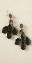 Lee Angel Jewelry Black Teardrop Dangle Earrings