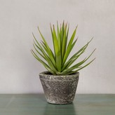 Graham and Green Faux Potted Airplant