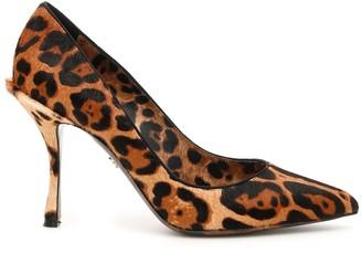 Dolce & Gabbana Animalier Lory Pumps