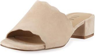 Neiman Marcus Howie Low-Heel Suede Slide Sandals, Nude