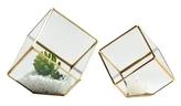 Torre & Tagus Oro Cube Terrariums (Set of 2)
