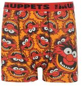 Disney Character Kids Boys The Muppets Single Boxer Shorts Printed Underwear Junior