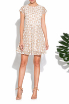 Shoshanna Fit & Flare Lace Dress