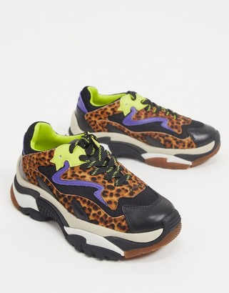 Ash addict chunky trainers in leopard mix