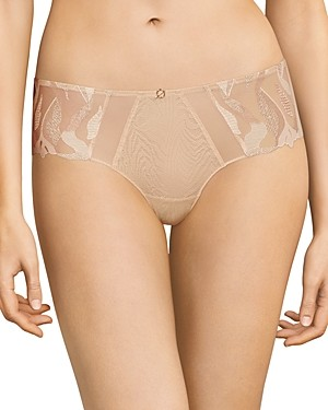 Chantelle Embroidered Lace Mesh Hipster