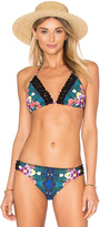Nanette Lepore Habanera Vixen Bikini Top