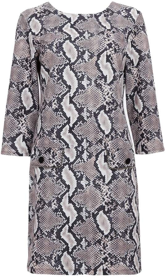 WallisWallis Stone Snake Print Shift Dress