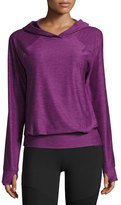 The North Face Motivation Jersey Hoodie, Wood Violet Heather (Purple)