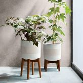 west elm Mid-Century Turned Wood Leg Planters - Patterned