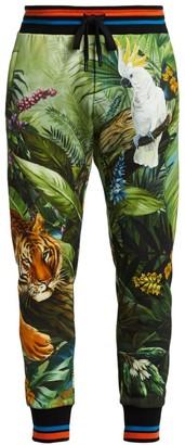 Dolce & Gabbana Jungle-Print Joggers