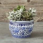 Williams-Sonoma Williams Sonoma Blue & White Ceramic Planter, Small