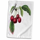 3dRose Florene - Vintage Food - Print of German Cherries From Botany Book - 12x18 Hand Towel (twl_195060_1)