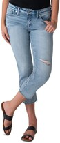 Thumbnail for your product : Silver Jeans Co. Distressed Elyse Cropped Jeans