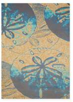 Panama Jack Sand Dollar 5-Foot 3-Inch x 7-Foot 2-Inch Area Rug in Peach