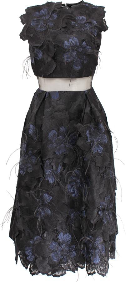 Erdem Sleeveless Embroidered Feather Hallie Dress