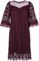 Aula lace detail ruffled sleeve dress
