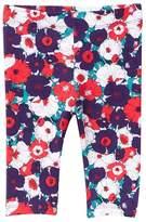 Joe Fresh Floral Print Leggings (Baby Girls)