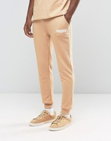 Puma Joggers In Tapered Fit