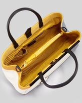 Fendi 2Jours Colorblock Calfskin Medium Tote Bag